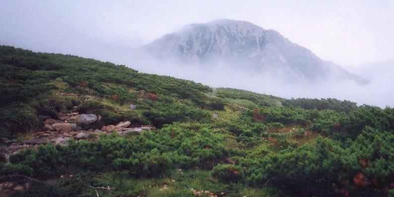 北アルプス 雲の平より鷲羽岳